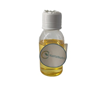 Excellent Quality Reasonable Price Health & Beauty Essential Oil Armoise Oil Bulk